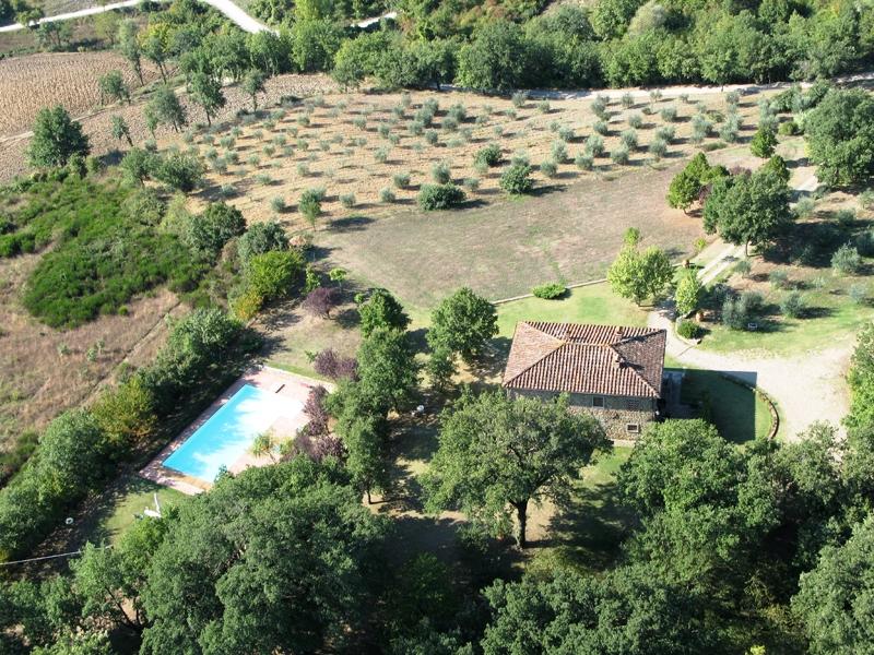 Le Vignacce_Castel Focognano_1