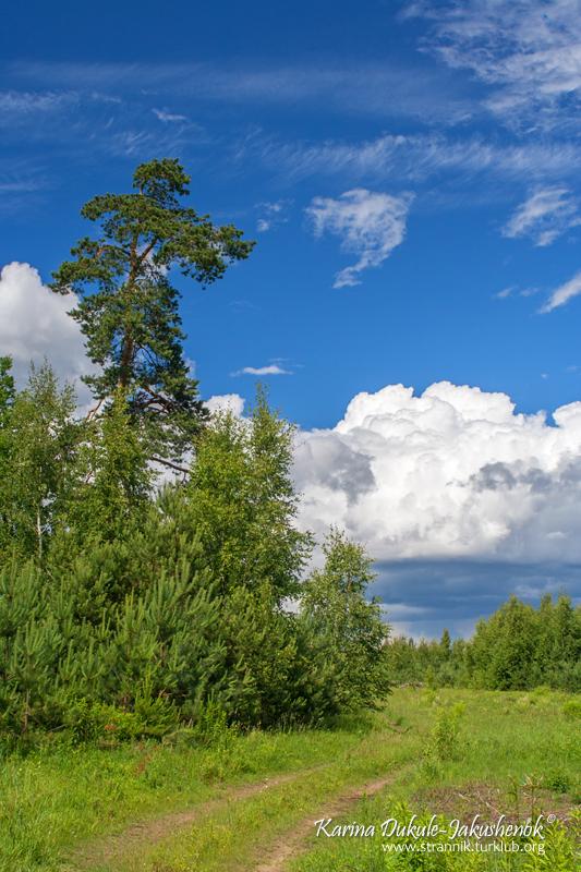 Голубое небо июня