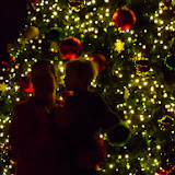 Christmastime - 116_6395.JPG