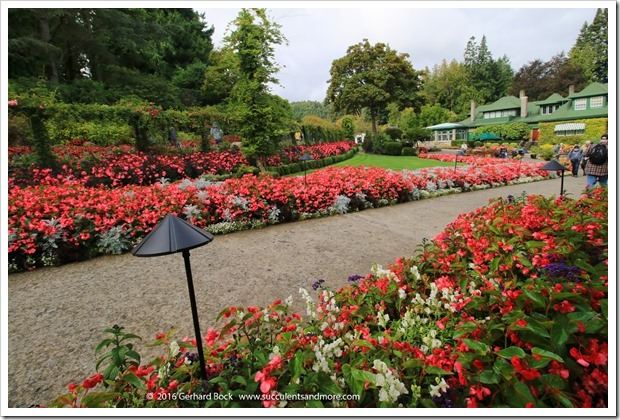 160906_Butchart_Gardens_0163