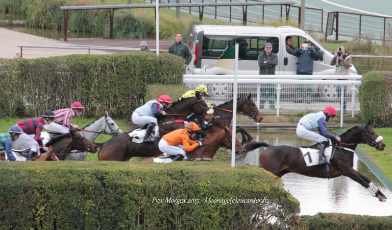 Photos Auteuil 29-11-2015 IMG_7479