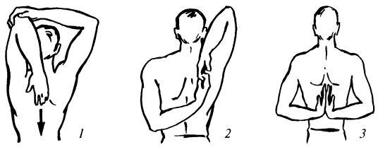 Залом плечевого сустава, Залом за лопатками, Залом плечевых суставов