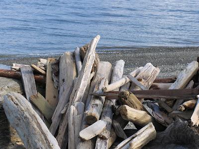Beach near Point Robinson Lighthouse, Vashon Island, Seattle