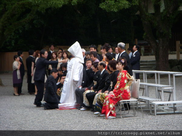 結婚典禮團照