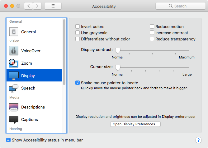 5 Display option of Accessibility Preference Pane