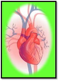 COVID-19 myocardial injury in survivors myocardial injury and covid-19 possible mechanisms can covid-19 cause heart damage does covid 19 cause permanent heart damage can heart patients survive covid 19 how does covid 19 affect the cardiovascular system how does COVID-19 affect the heart