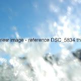 DSC_5834.thumb.jpg