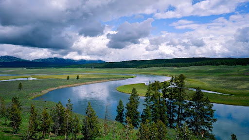 Yellowstone River, Yellowstone National Park, Wyoming.jpg