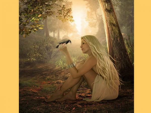 Girl Speaks With Bird, Spirit Companion 1