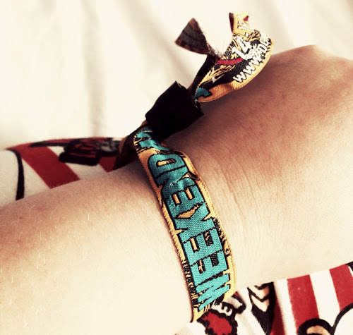 Download 2013 Wristband