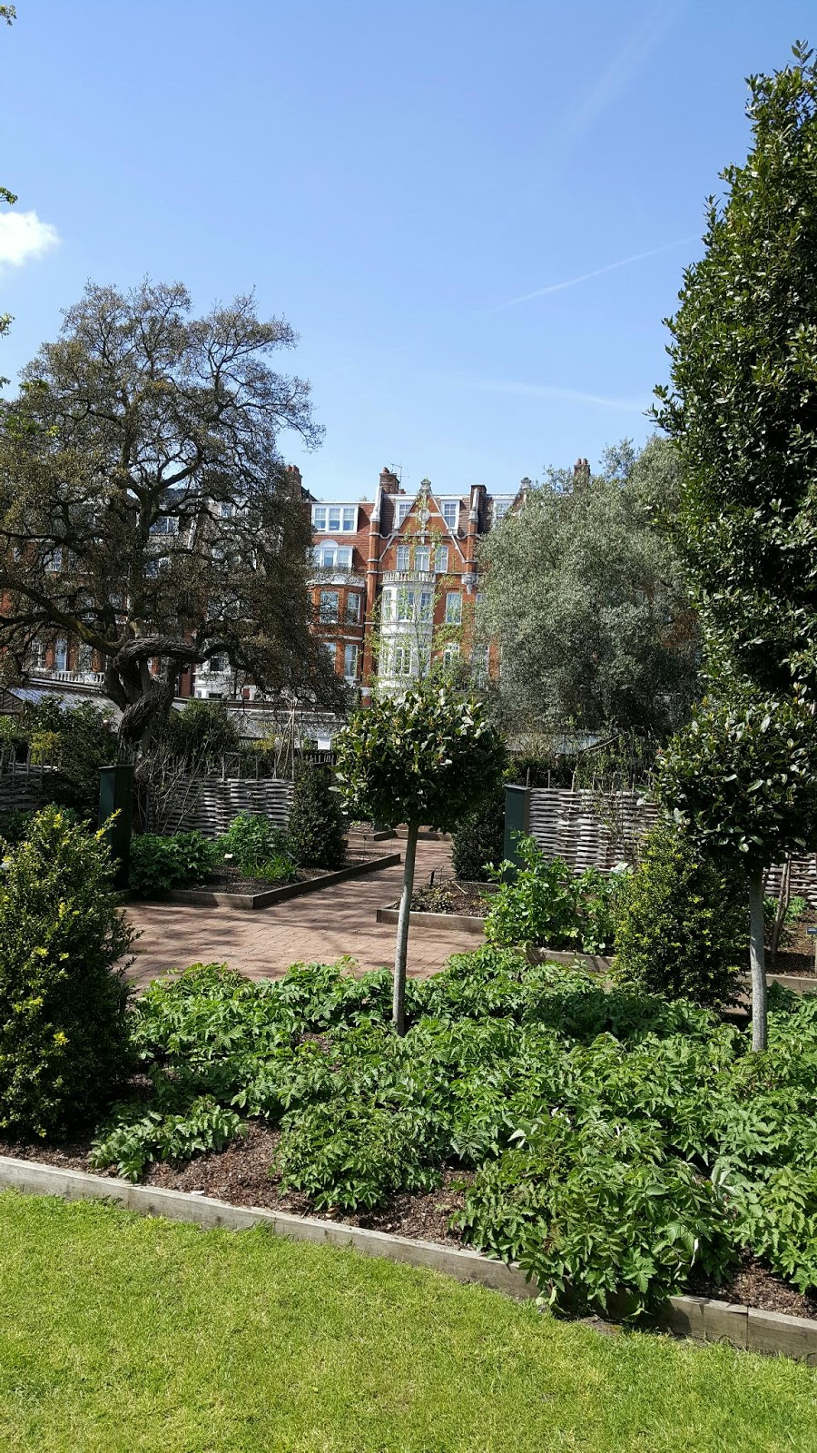 Physic garden wikipedia -  With Others Working In The Same Field By The 1700 S It Had Initiated An International Botanic Garden Seed Exchange System Which Continues To This Day