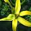 MADI Ambaria's profile photo
