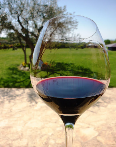 Istrian Teran red wine by Franc Arman