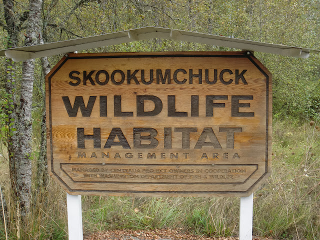 Skookumchuck Wildlife Habitat below the reservoir