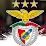 Angel Correia's profile photo