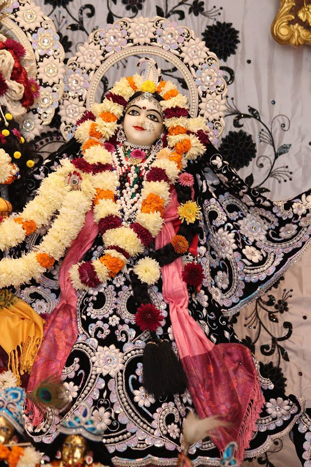 ISKCON Kanpur Deity Darshan 19 Dec 2015 (1)