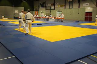 06-06-2015 examen Mark van de Pavert 1e dan Jiu Jitsu