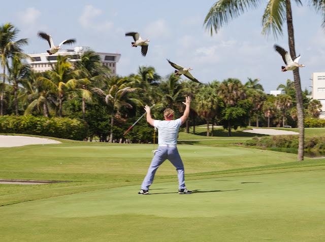 2015 Golf Tournament - 2015%2BLAAIA%2BConvention-1574.jpg