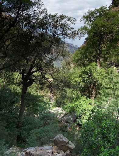 Passage en RG du Fangu