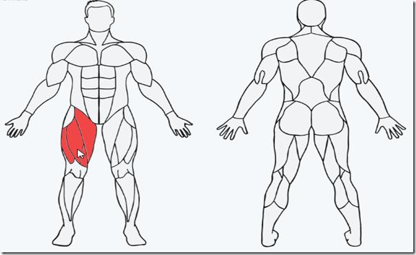 erkek-bacak-kası-geliştirme