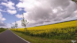 vlcsnap-2015-05-13-18h44m01s8