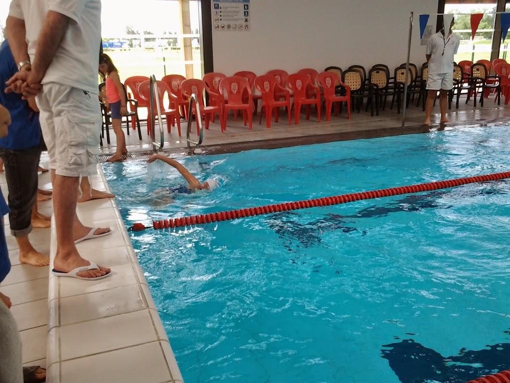 Le club libourne natation - Piscine municipale libourne ...