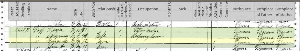 [9-June-1880---US-Federal-Census---Ge%5B2%5D]