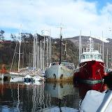 Puerto Williams to Caleta Morning