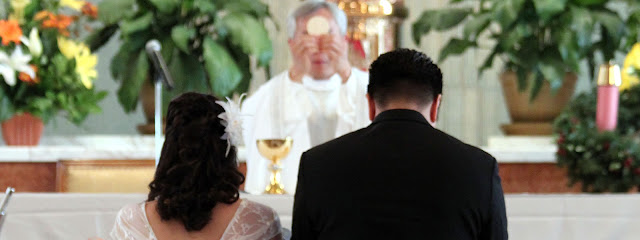 Pope Francis confuses Catholics on marriage vows