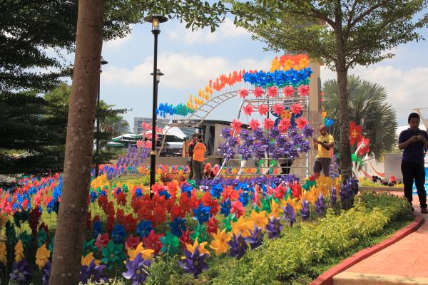 bunga kipas warna warni