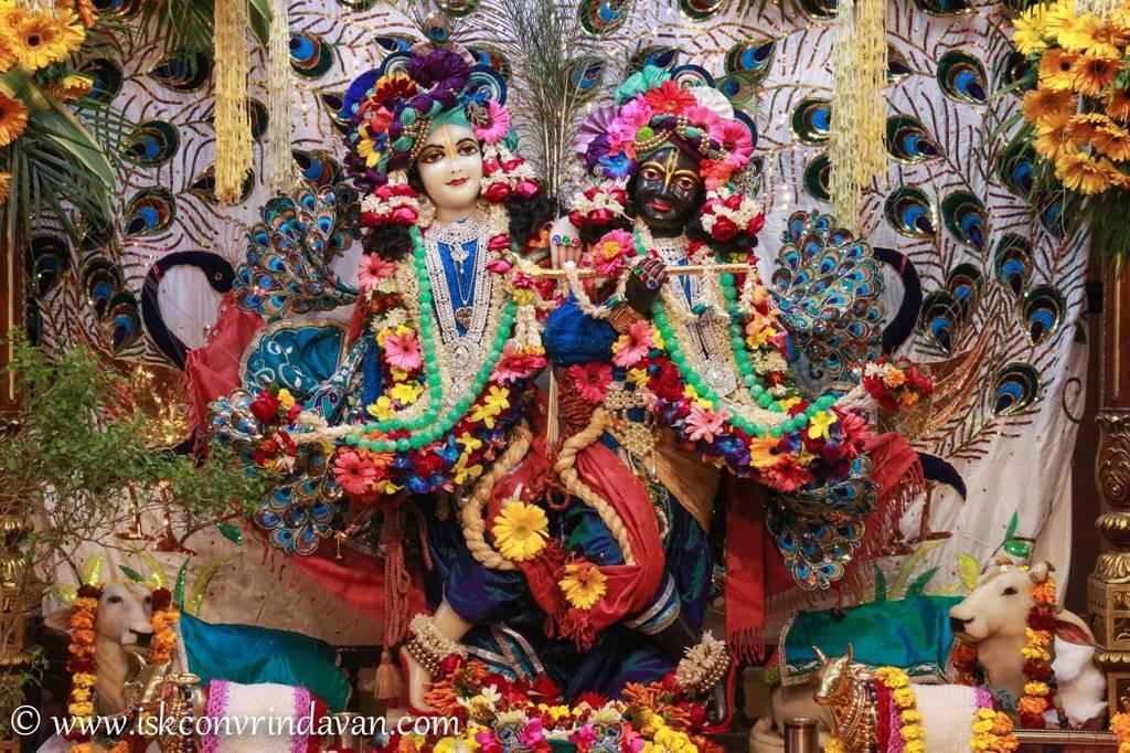 ISKCON Vrindavan Sringar Deity Darshan 25 Jan 2016 (11)