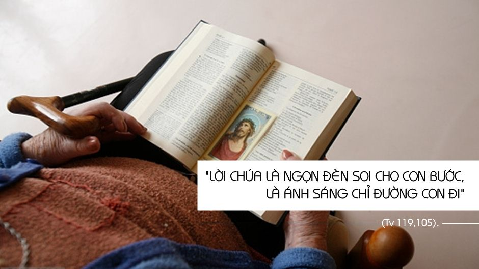 Những câu Kinh Thánh để đọc