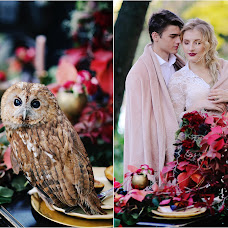 Wedding photographer Natalya Sirenko (Sirenko). Photo of 02.11.2017