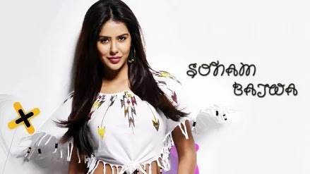 Top Most 100 Sexiest Pictures Of Sonam Bajwa-Hot Navel Cleavage Photo Gallery