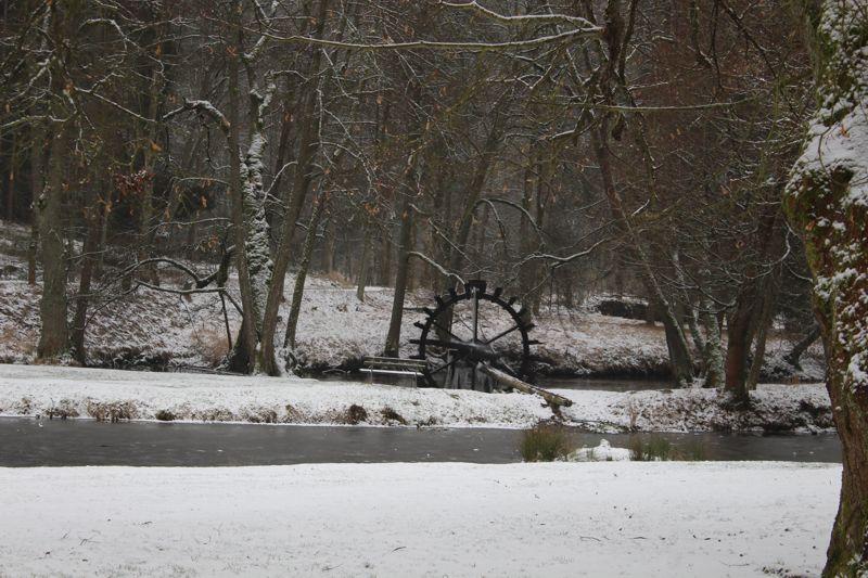 01. Januar 2016: Neujahrswanderung ins Waldnaabtal - IMG_1532.JPG