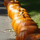 10-26-14 Dallas Arboretum - _IGP4295.JPG