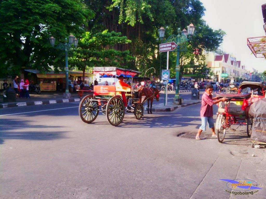 java bali lombok 22mei-2juni 2014 hp 008