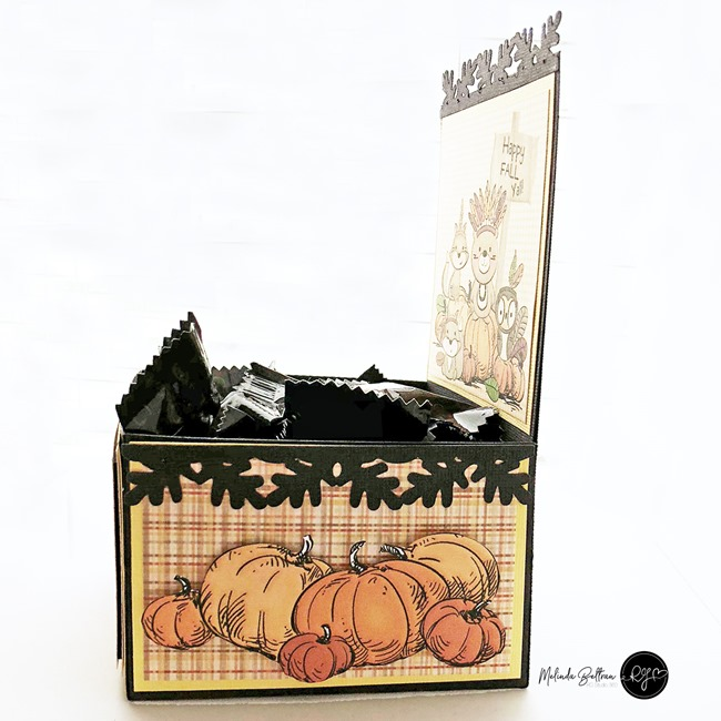 foxy fall treat box side view