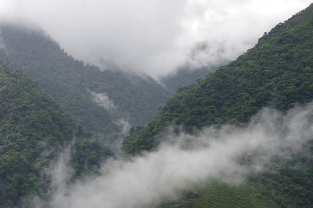 Santa María en Boyacá, 820 m (Boyacá, Colombie), 2 novembre 2015. Photo : J.-M. Gayman