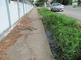Just about every street has an open gutter running along it for drainage.