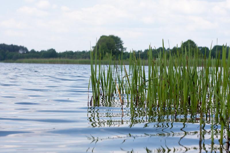 Озеро Лука