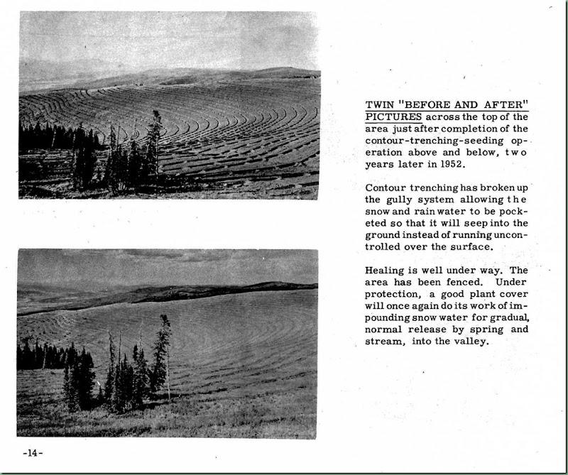Mt. Pleasant Story p 14