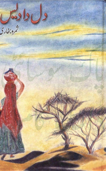Dil Da Des is a very well written complex script novel by Samra Bukhari which depicts normal emotions and behaviour of human like love hate greed power and fear , Samra Bukhari is a very famous and popular specialy among female readers