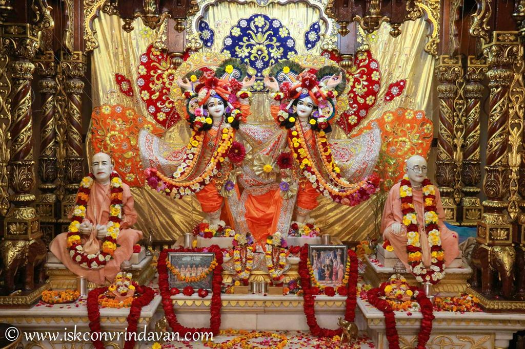 ISKCON Vrindavan Sringar Deity Darshan 12 Mar 2016 (3)