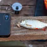 20140730_Fishing_Tuchyn_081.jpg