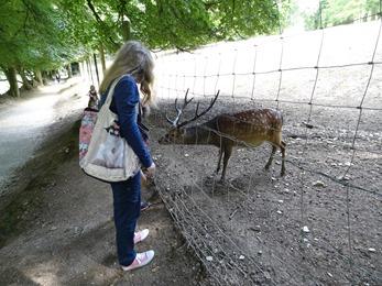 2017.08.06-032 Stéphanie et un cerf sika