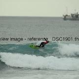 _DSC1901.thumb.jpg