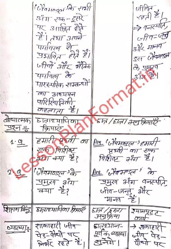 Social Science Lesson Plan in Hindi