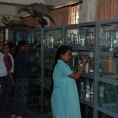 Zoology Museum.jpg