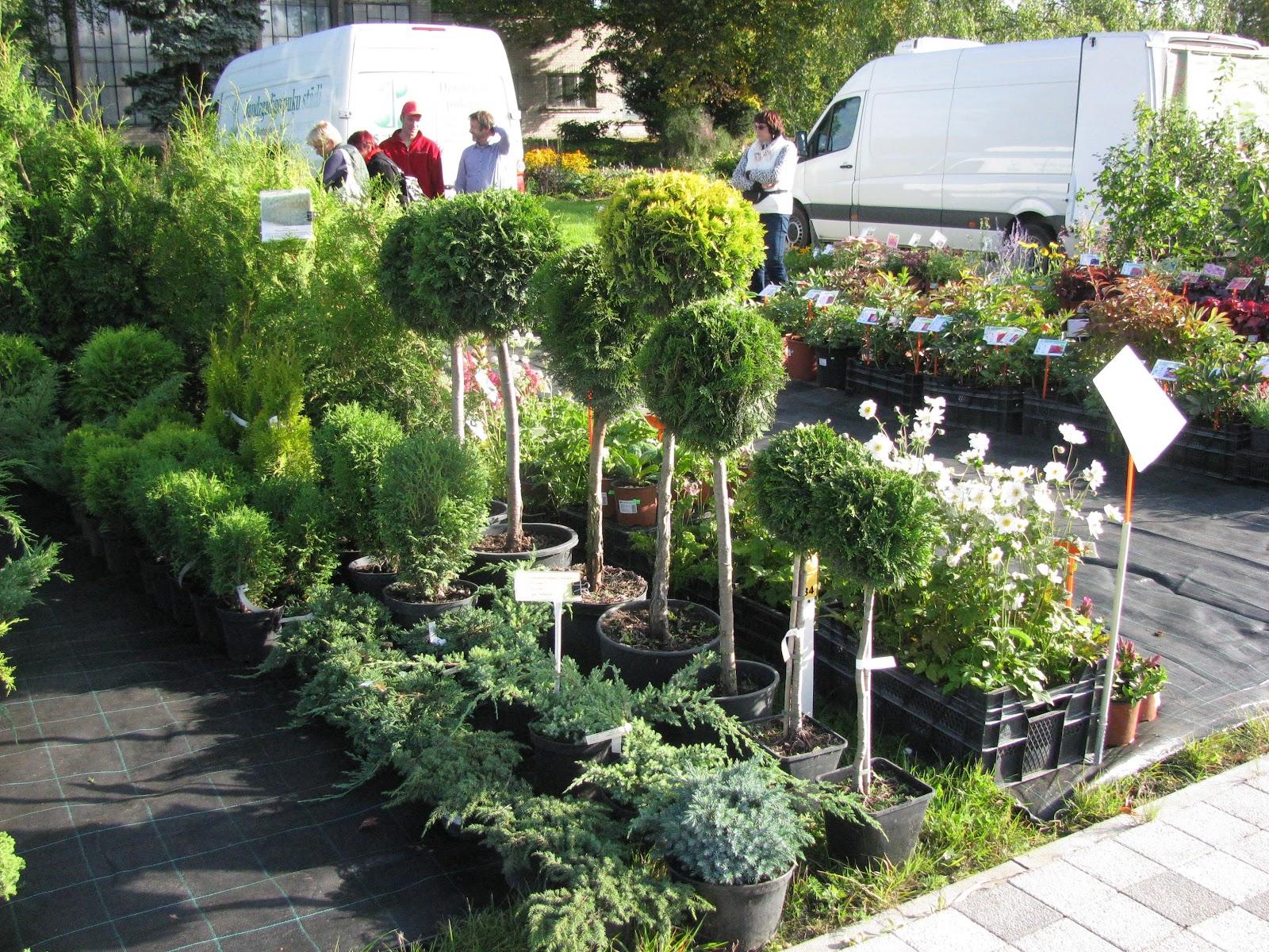 Pasaules augu diena Nacionālajā Botāniskajā dāzrā